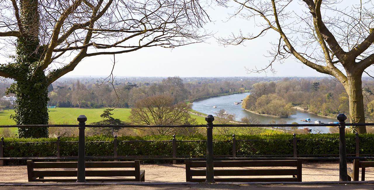Petersham Hill View